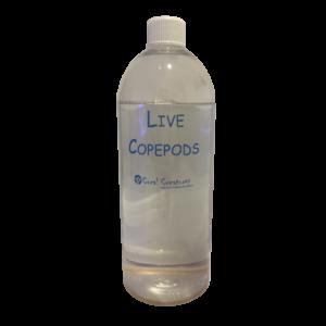 live-pods