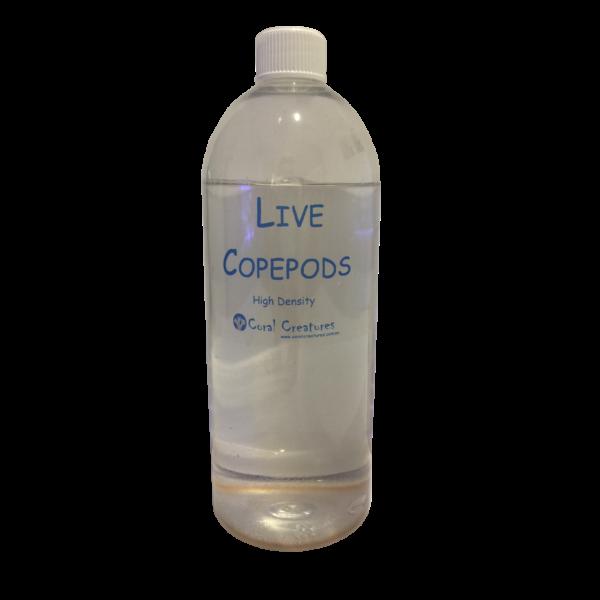 live-pods-hd